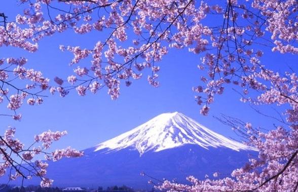 日本签证放宽到5年 中国游客被各国抢疯了!