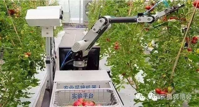 图为果蔬采摘机器人-新疆智能农业装备迎来采购热潮 附名单