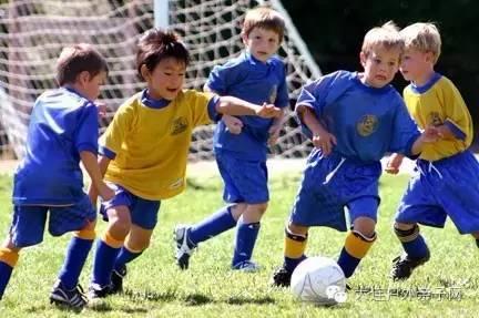 我们发现学足球的小朋友爸爸陪伴 女孩也适合踢足球吗   曾有学者专